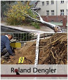 Baumbruch und Bodenuntersuchung Roland Dengler GmbH