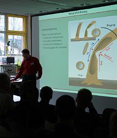 Vortrag und Präsentation Thema Bäume