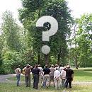 Entscheidungshilfen bei Baumproblemen