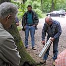 Praxisberatung für Baumthemen