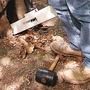 Baumuntersuchung mit Geräten