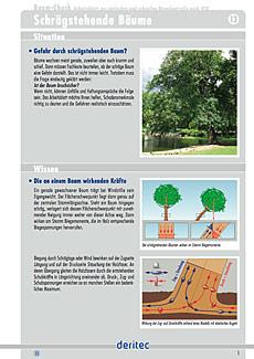Baum-Check Beispielseite zur Grundlagenvermittlung