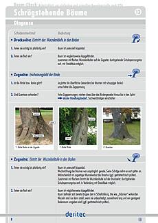 Baum-Check Beispielseite zu Diagnoseschritten
