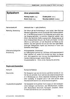 Beispielseite 1 zum Fachbuch Baumdaten 1, Laubbäume