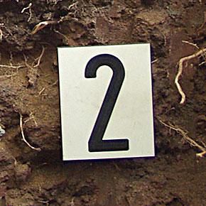 Markierungsschild für Baum- und Bodenuntersuchungen