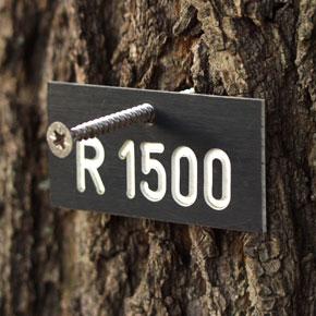 rechteckig Markierungsplakette für Bäume