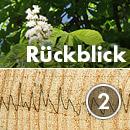 Baum- und Bodenseminar Jena 2019 Rückblick Bohrwiderstandsmessung