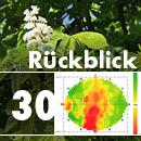Baum- und Bodenseminar Jena 2020 Rückblick Impulstomografie