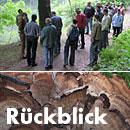 Baum- und Bodenseminar Jena 2014 Rückblick Riesenporling