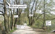 Baumdiagnose nach VTA, Titel