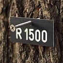 Markierungsplakette für Bäume