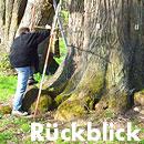 Rückblick Baum- und Bodenseminar Jena 2009, Workshop VTA Baumkontrolle