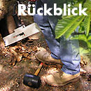 Rückblick Baum- und Bodenseminar Jena 2011, Workshop Stammfaule Bäume 2