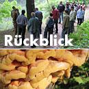Rückblick Baum- und Bodenseminar Jena 2013, Workshop Rechtsfragen und Baumkontrolle