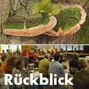 Rückblick Baum- und Bodenseminar Jena 2016, Workshop Baum und Boden